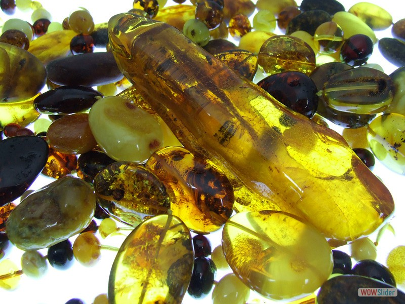 Baltic Amber 18 million+ years old