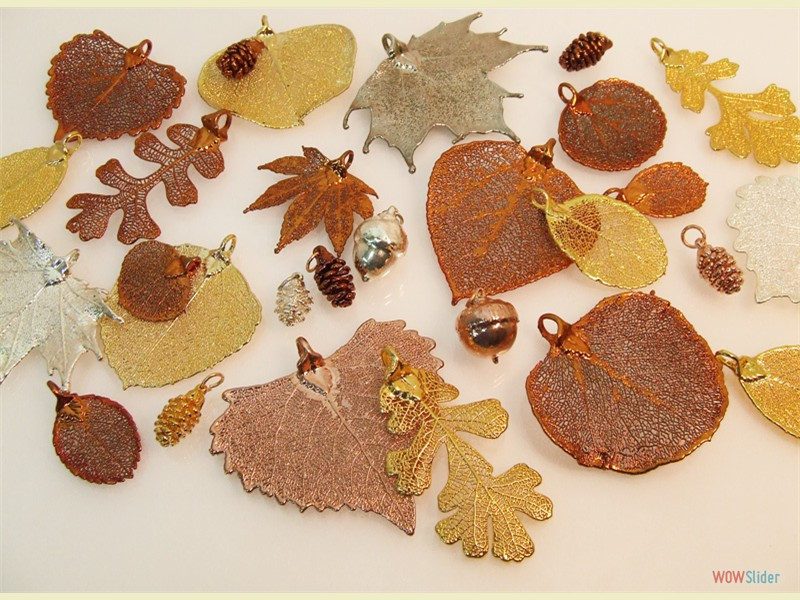 Real Leaves, Pine Cones & Acorns